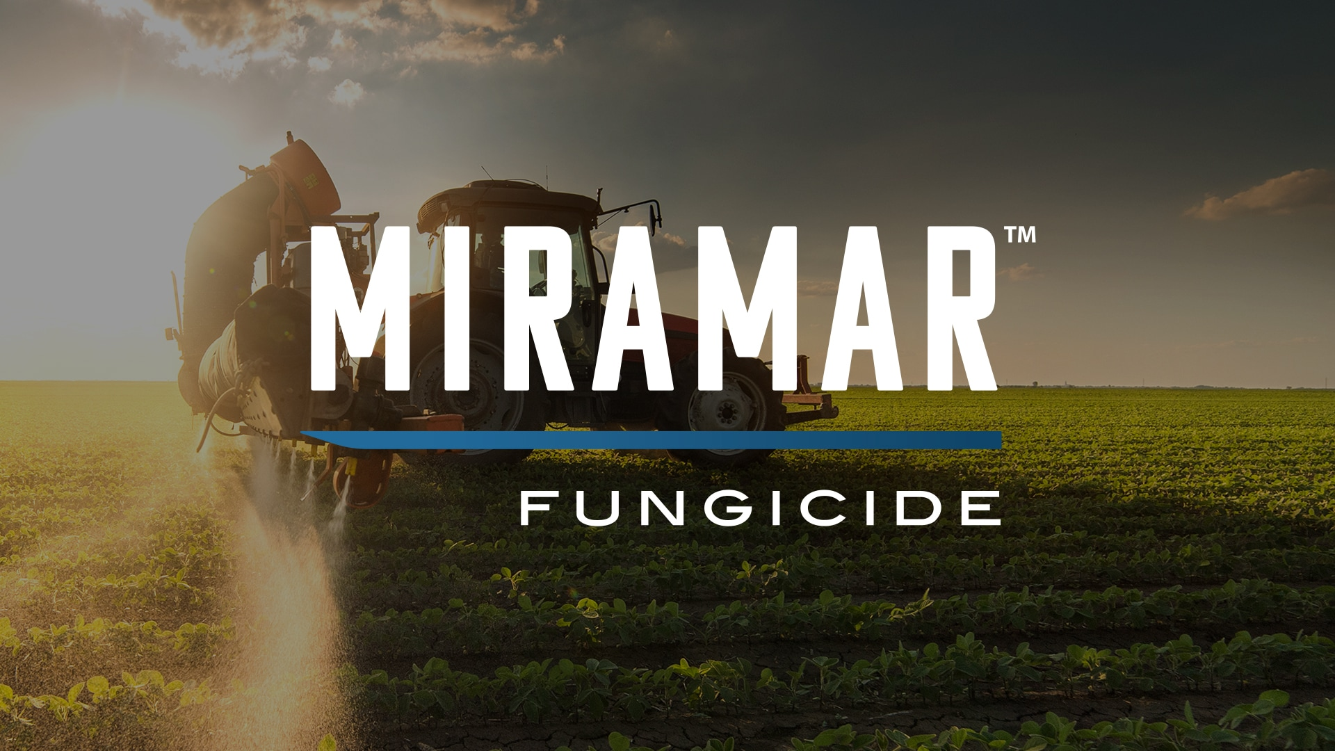 Miramar Featured Image