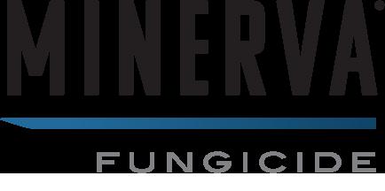 Minerva® logo