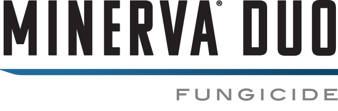 Minerva® Duo logo