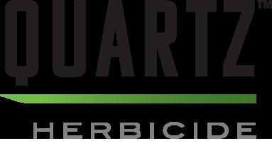 Quartz™ logo