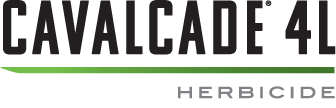 Cavalcade® 4L logo