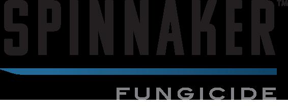Spinnaker™ logo