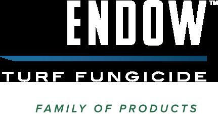 Endow Logo