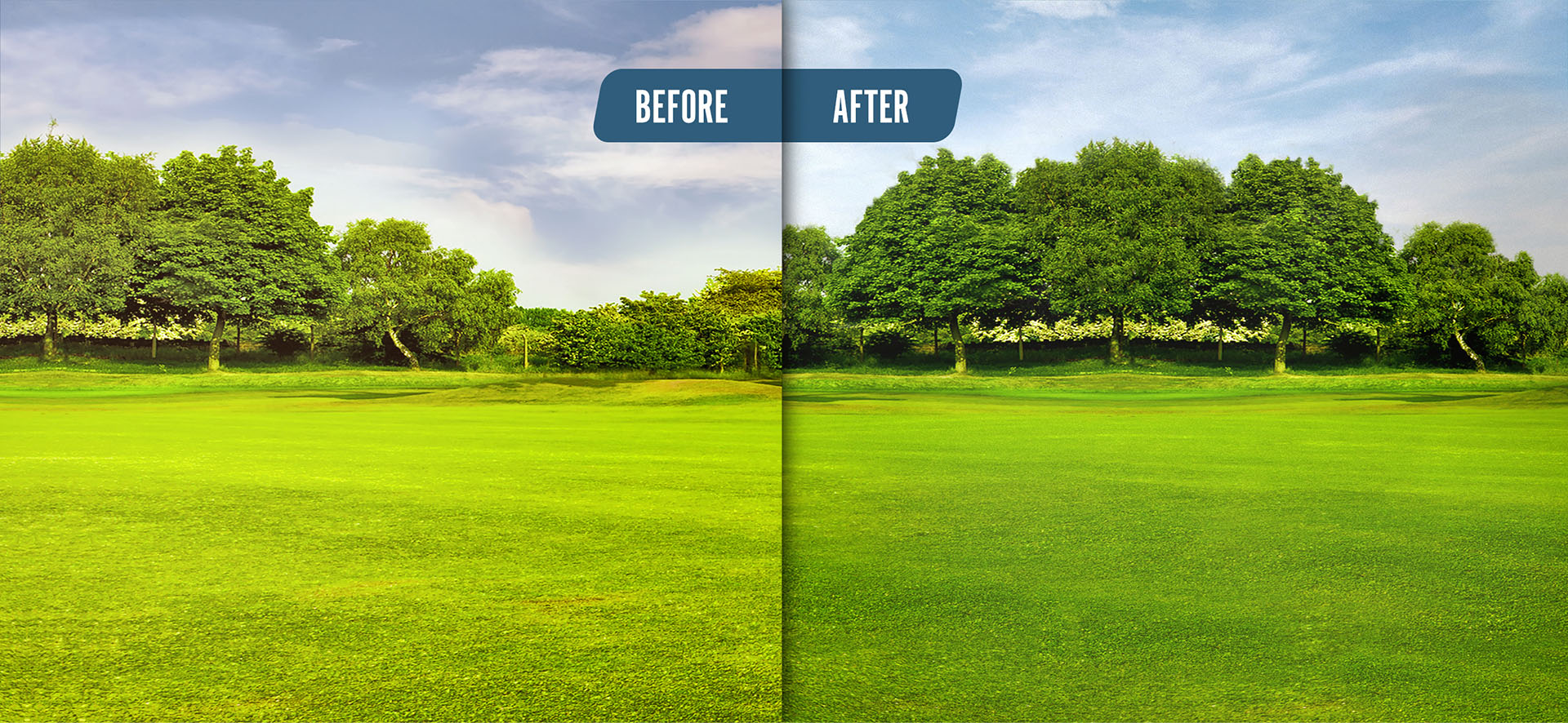 golf course before and after ETQ treatment